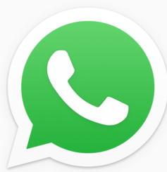 logo piccolo whatsapp